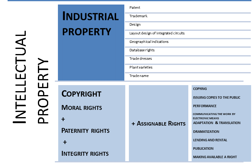 Fig2 Intellectual property
